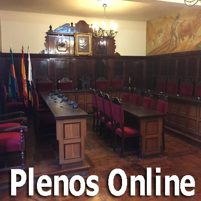 Plenos Online